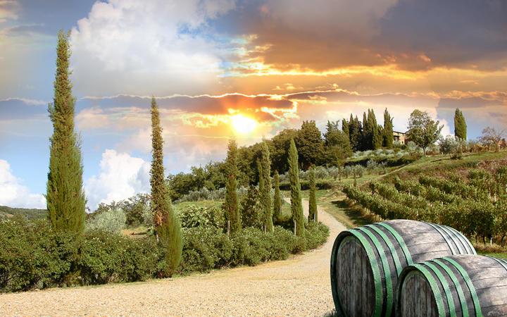 Idyllische Landschaft im Chiantital und seiner Weinberge, Umbrien, Italien © Samot / Shutterstock.com