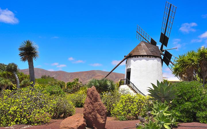 Alte Windmühle in Antigua auf Fuerteventura © nito / shutterstock.com