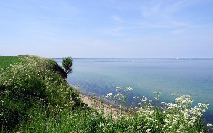 Blick über die Ostseeküste © Wilm Ihlenfeld / shutterstock.com