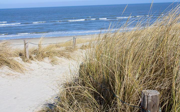 Typischer Strand an der Nordsee © Eva Gruendemann / shutterstock.com