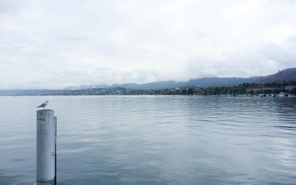 Zürichsee © Roman Vaibar